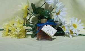 Vermont Maple Syrup Log Cabin Favor